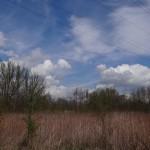 Ein schöner Apriltag DSC02586