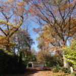 Südwest-Friedhof Oktober 2017